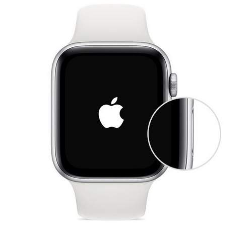 How to open apple watch