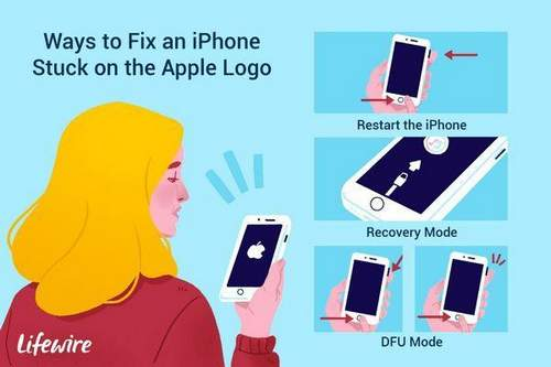 Iphone Hangs On An Apple, What To Do Step-By-Step Actions
