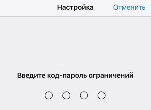 What is an iPhone Restriction Password